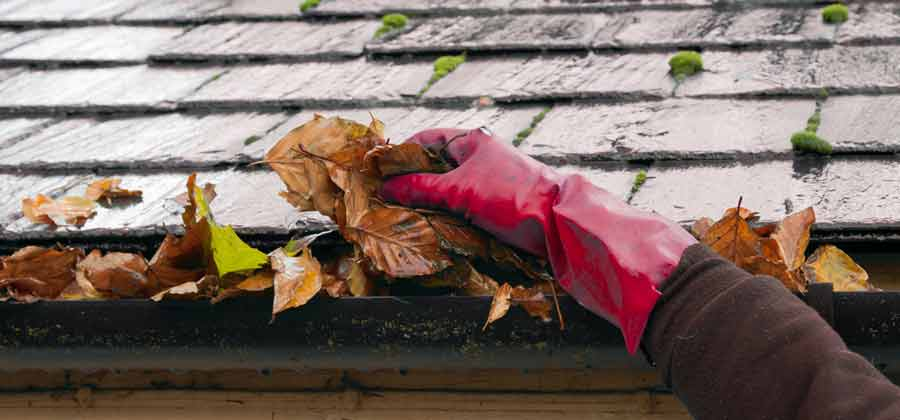 Clearing guttering leaves with your hands