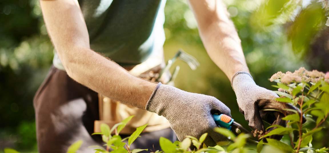 woman preparing garden
